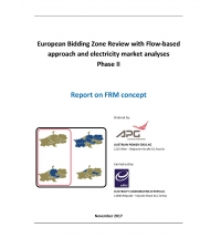 Review with Flow-based Approach and Electricity Market Analyses  (Phase II)