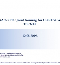 Support to the Implementation Process of PFC Function for Redispatching in CORE Region – for CORESO and TSCNet