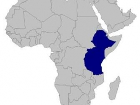 Eastern Africa (Ethiopia, Burundi, Kenya, Tanzania, Rwanda and Uganda)